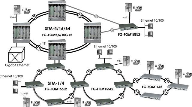 Схема применения FlexGain FOM10GL2